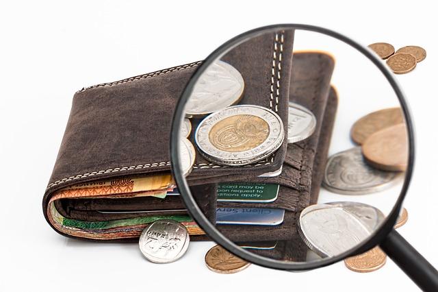 peněženka, drobné mince