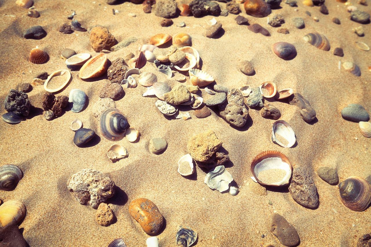 mušle a kameny